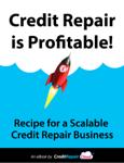 Credit Repair is Profitable!