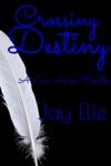 Crossing Destiny A Love Across Worlds