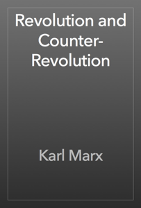 Revolution and Counter-Revolution Book Review