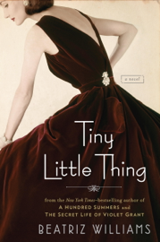 Tiny Little Thing book
