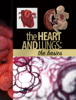 Educational Resources, University of Georgia - The Heart and Lungs artwork