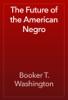 Booker T. Washington - The Future of the American Negro artwork