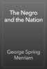 George Spring Merriam - The Negro and the Nation artwork