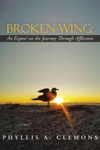 Broken-Wing An Expose On The Journey Through Affliction