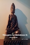 Thoughts On Buddhism II Great Doubt