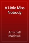 A Little Miss Nobody
