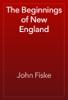 John Fiske - The Beginnings of New England artwork