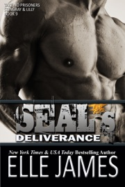 SEAL's Deliverance PDF Download