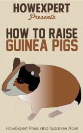 How To Raise Guinea Pigs: Your Step-By-Step Guide To Raising Guinea Pigs