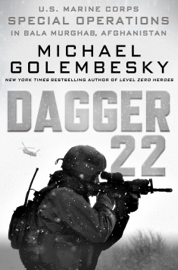Dagger 22 book