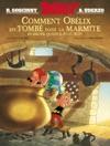 Astrix - Comment Oblix Est Tomb Dans La Marmite Quand Il Tait Petit