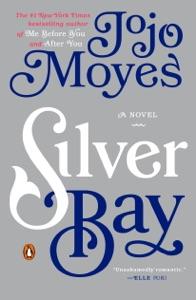 Silver Bay Book Cover