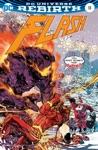 The Flash 2016- 13