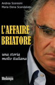 L'affaire Briatore Book Cover