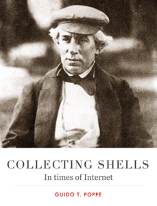 Collecting Shells Book Review