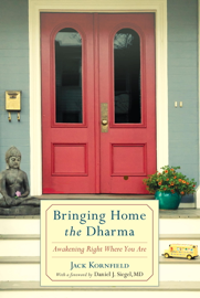 Bringing Home the Dharma book