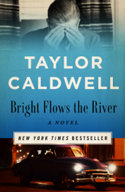Bright Flows the River book