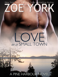 Love in a Small Town - Zoe York book summary