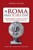 A Roma oggi se dice così. Dizionario e modi di dire del nuovo romanesco Book Cover