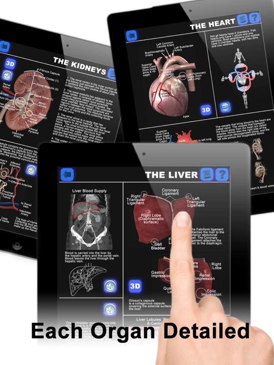 Anatomy 3D: Organs