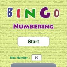 Activities of Bingo Numbering