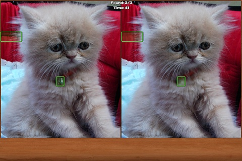 Cats Spot the Difference