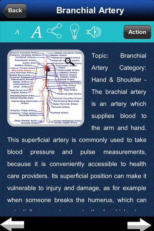 Artery System: CardioVascular screenshot-4