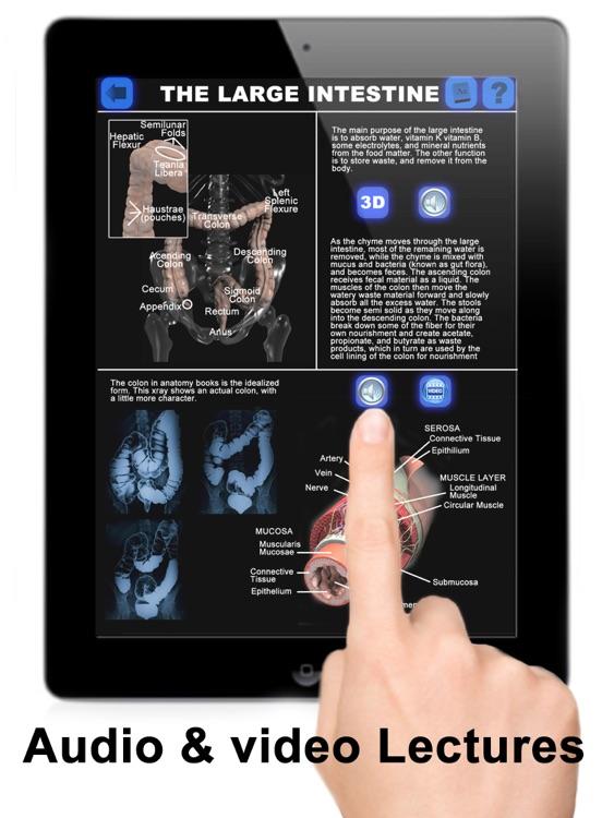 Anatomy 3D: Organs screenshot-4