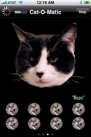Cat-O-Matic Free Edition