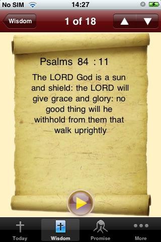 Daily Bible Audio Lite screenshot three