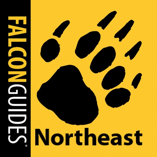 Northeast Scats & Tracks