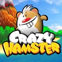 Codes for Crazy Hamster Free Hack