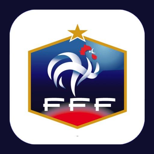Euro 2012 France icon