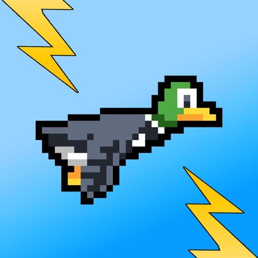 Zappy Duck