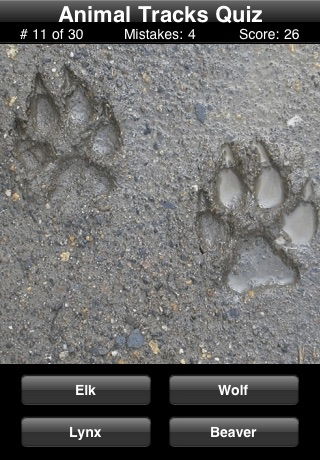 Animal Tracks Quiz screenshot1