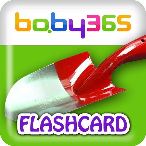 baby365-bilingual flash cards-Tools