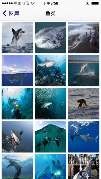 海洋百科 screenshot-2