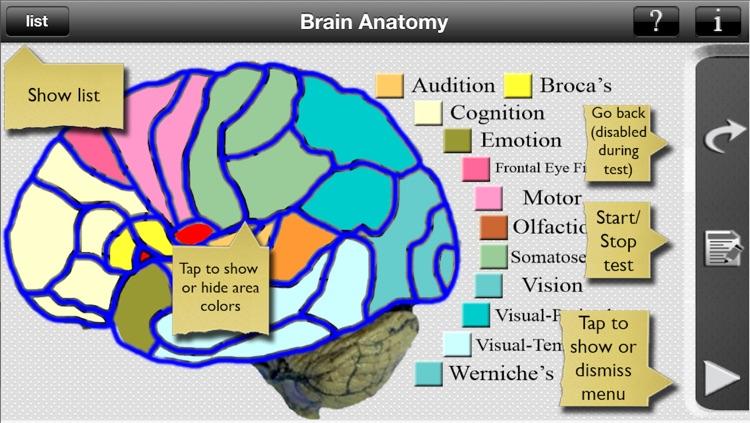 Brain Anatomy screenshot-3