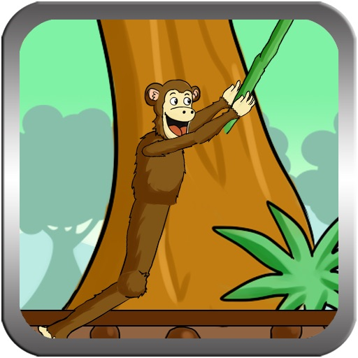 iMonkey Branch