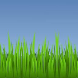 Lawn Maintenance Calendar