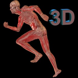 Human Body 3D for iPad