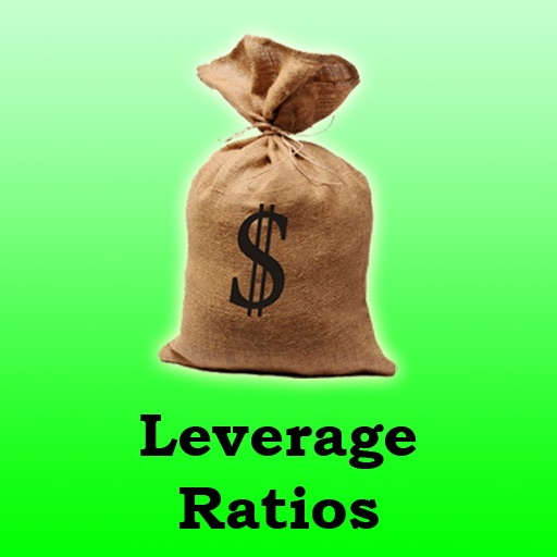 Leverage Ratios Calculator