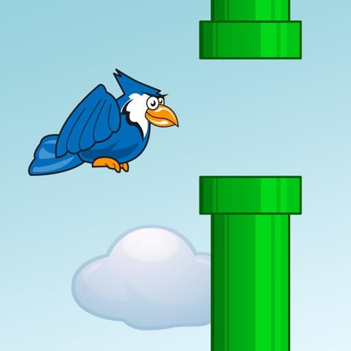 Flappy's Pipe Dream iOS App