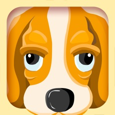 Activities of Find Animals - the Preschool Learning Game
