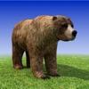 Bear Simulator 3D Madness - iPhoneアプリ