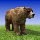 Bear Simulator 3D Madness icon