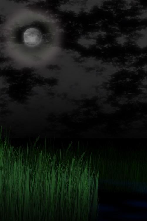 Visualizer Vol.2 HoTaRu