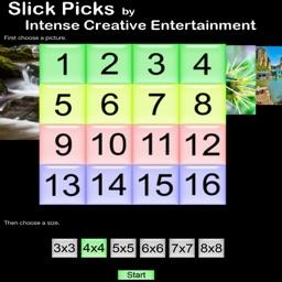 Slick Picks Ice
