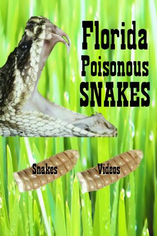 Florida Poisonous Snakes screenshot 2