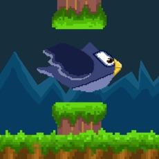 Activities of Flight Owl